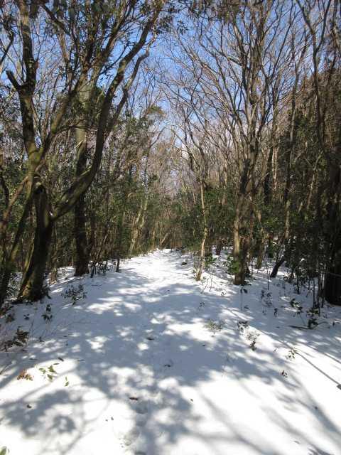 IMG4297JPG雪原の縦走路