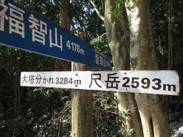 IMG4317JPG標識2