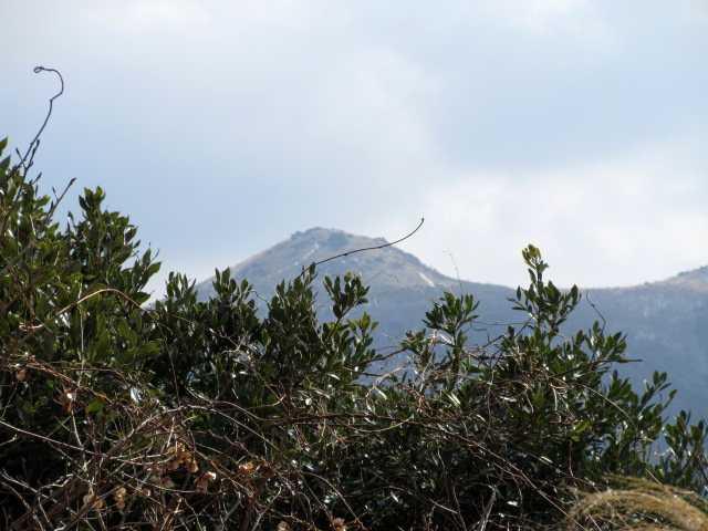 IMG4336JPG福智山をアップ