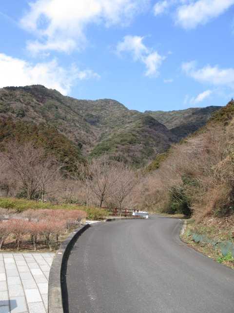IMG4364JPG福智山方面