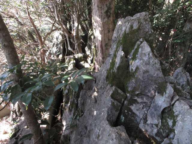 IMG4480JPG両貝の岩群1