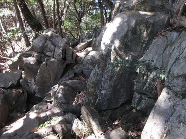 IMG4483JPG両貝の岩群2