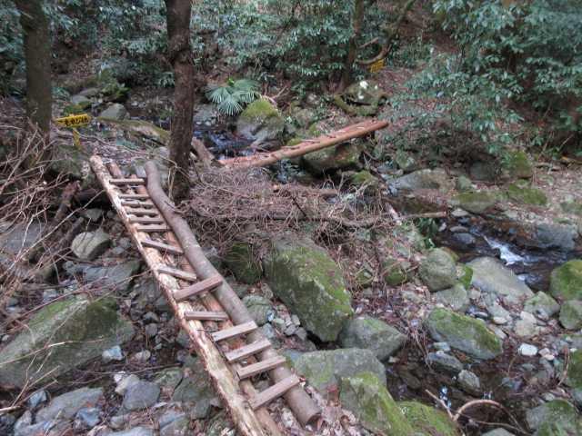 IMG4543JPGこもれび橋