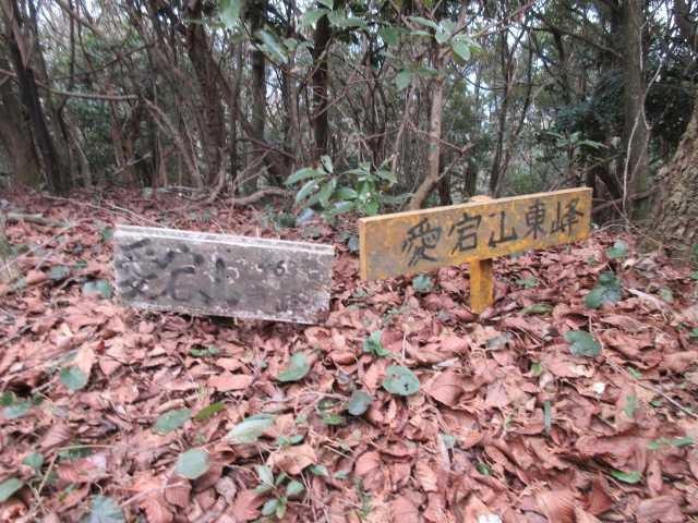 IMG4697JPG愛宕山東峰