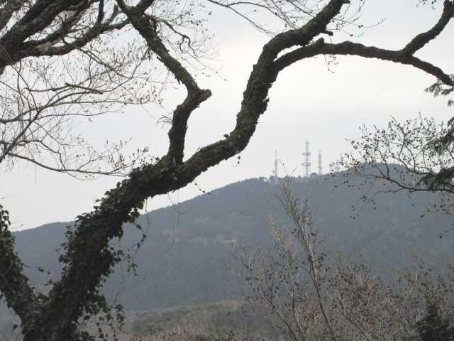 IMG4702JPG山頂より大阪山