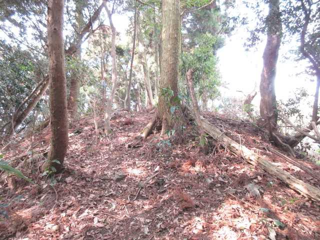 IMG4729JPG小富士山