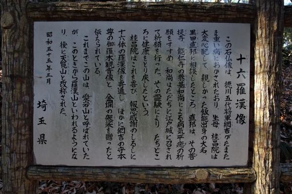 ☆IMGP8626