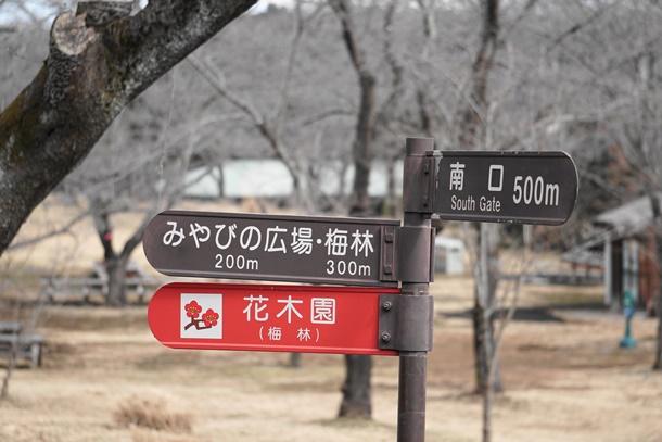 DSC00038 (1)