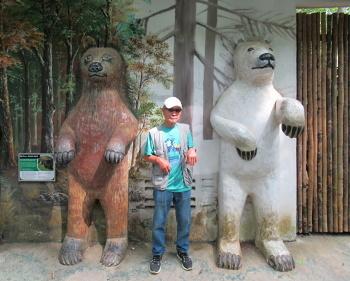 171101熊 (5)