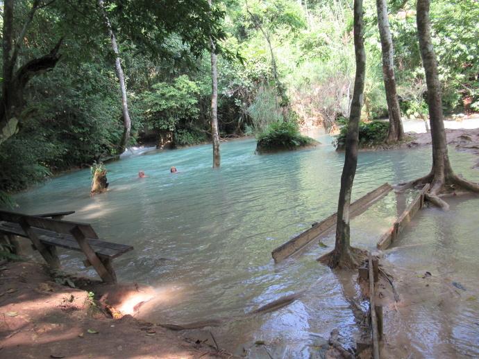 171101水泳 (1)