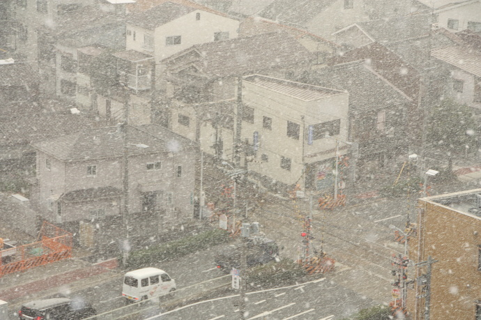 180126雪 (3)