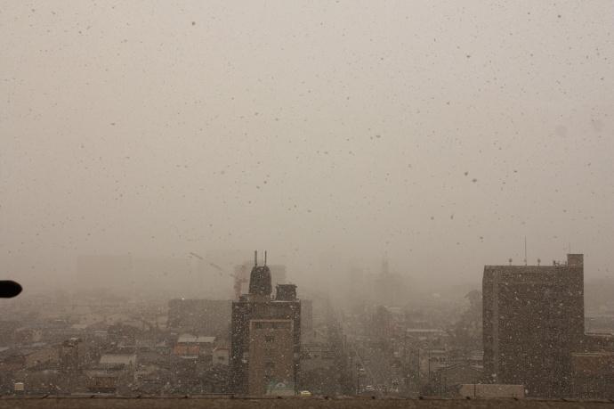 180126雪 (4)