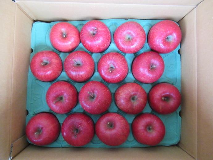 180205リンゴ