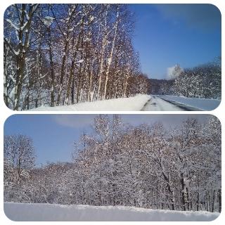 道道の雪化粧1
