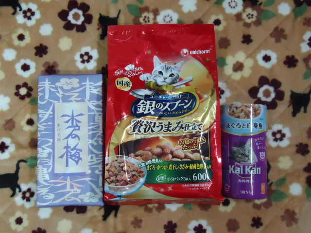 gokifu0030.jpg