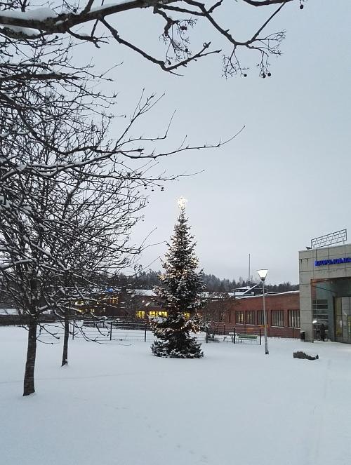 フィンランド 1月 クリスマスライト