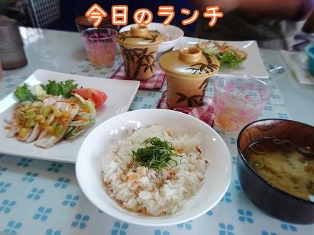 kinako8644.jpg