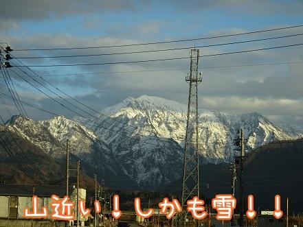 kinako8652.jpg