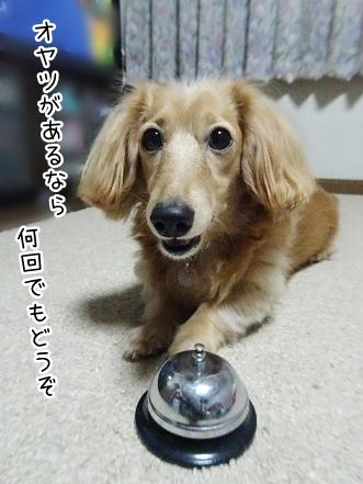 kinako8667.jpg