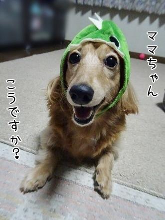kinako8680.jpg