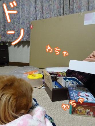 kinako8684.jpg