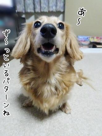 kinako8688.jpg