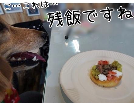 kinako8702.jpg