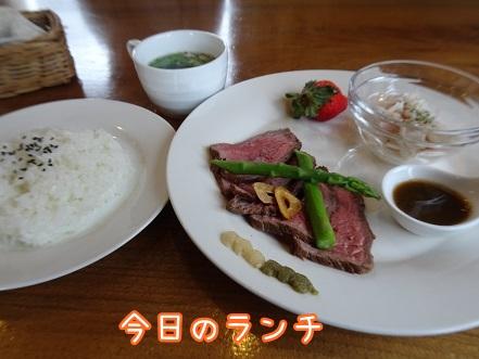 kinako8709.jpg