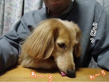 kinako8743.jpg