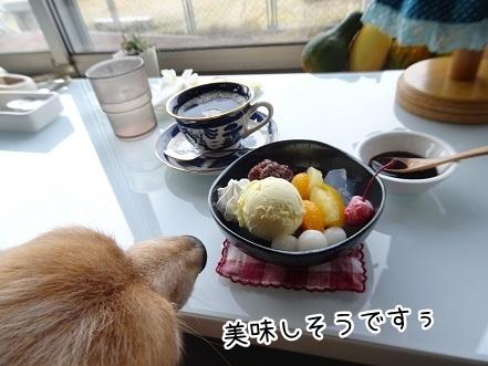 kinako8770.jpg