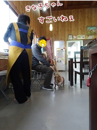 kinako8779.jpg