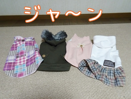 kinako8785.jpg