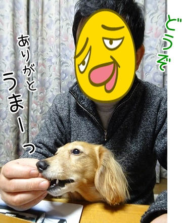 kinako8813.jpg