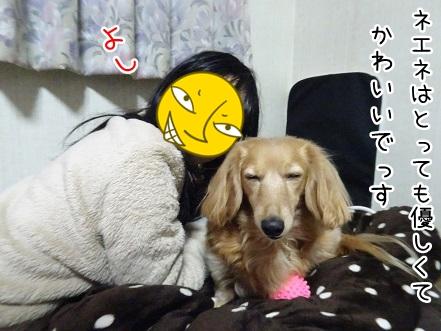 kinako8887.jpg