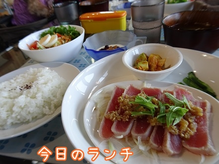 kinako8925.jpg