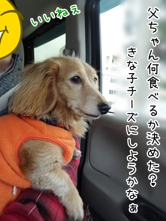 kinako8999.jpg