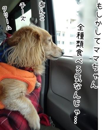 kinako9000.jpg