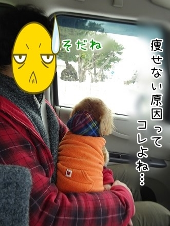 kinako9004.jpg