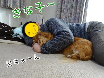 kinako9005.jpg