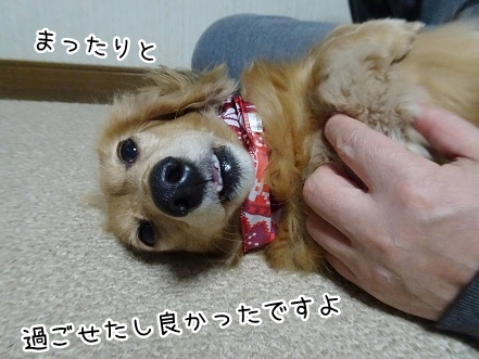 kinako9076.jpg