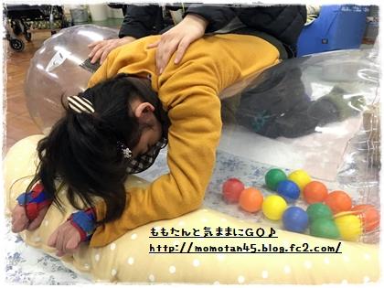 IMG_0488_20180201211618d10.jpg