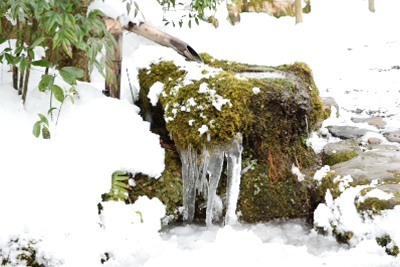 雪DSC_0050