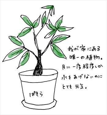 IMG_0913_R.jpg