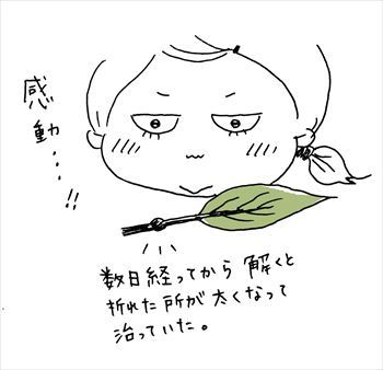 IMG_0916_R.jpg