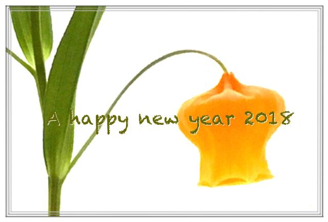 190101 謹賀新年