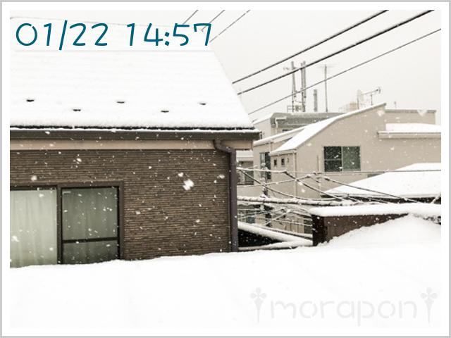 180123 大雪-1