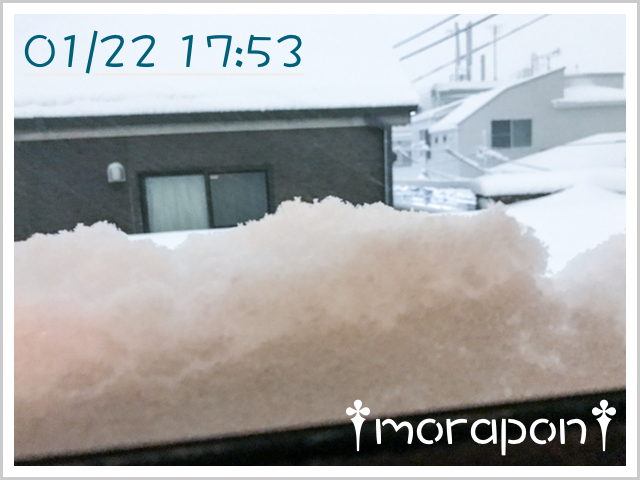 180123 大雪-2