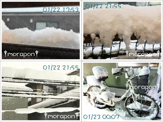 180123 大雪-4