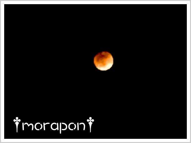 180131 皆既月食-3