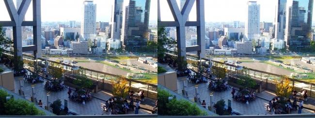 大阪ステーションシティ 和らぎの庭2017.10.8(平行法)